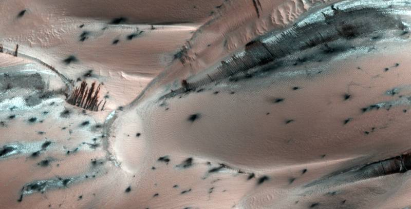 Almost trees on Mars