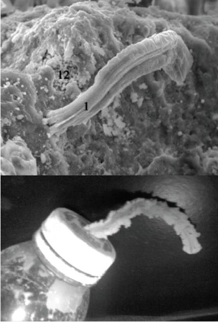 Hoover's filaments vs. Fries's clay extrusion