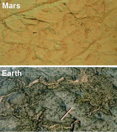 Comparison of cracks in Gillespie Lake outcrop on Mars and in a modern microbial mat in Bahar Alouane, Tunisia.